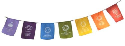 Rainbow Multi Colour Chakra Symbol & Mantra Affirmation Prayer Flags / Buntin...