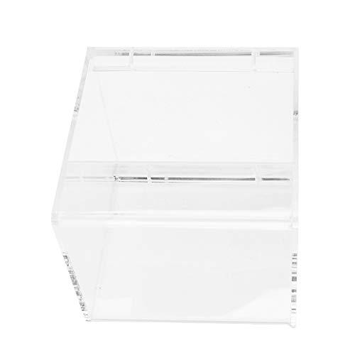 SNOWINSPRING - Zubehör für Wildvogeltränken in transparent, Größe S