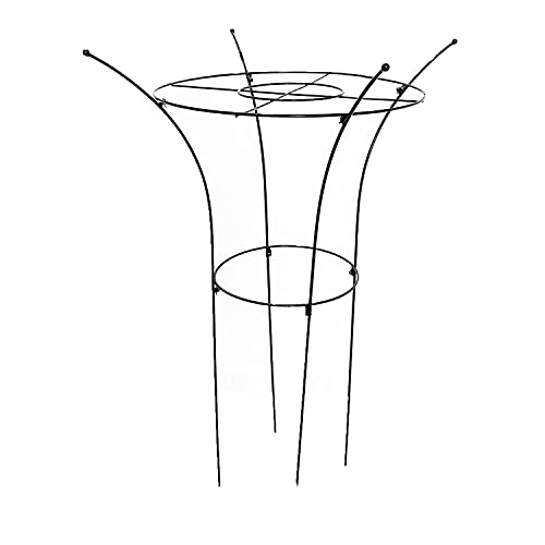 HJHQQ-CZYHG Jardín Arch Enrejado, Soporte de Plantas Jaula Metal Rust Rust Asserant Garden Support Support Plant Staca Soporte de Planta para Tomate, Planta de Escalada (Size : 60cm)