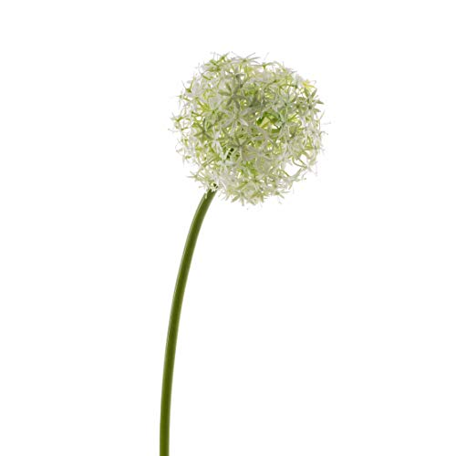 artplants.de Set 6 x Kunstblume Allium Samara, Creme, 75cm, Ø 12cm - 6 Stück Zierlauch künstlich - Künstliche Blumen