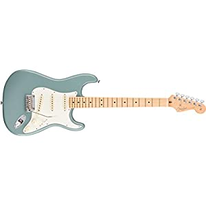 Fender American Professional Stratocaster MN Olympic White 0113012705 – Sonic Grey