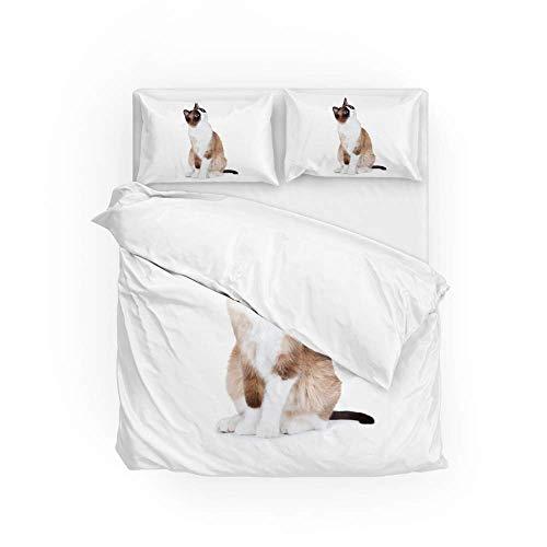Soft Quilt Bedding Set Surprised Cat Duvet Cover with Pillowcases 2 Pieces Set 135 x 200 CM,Single Size