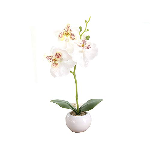 Miguor Mariposa Artificial Orquídea Flor 3 Tallos con Pequeño Jarró