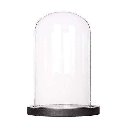Artlass Glass Cloche Bell Jar Display Dome with Black Wooden Base Dia 6' x H 10'