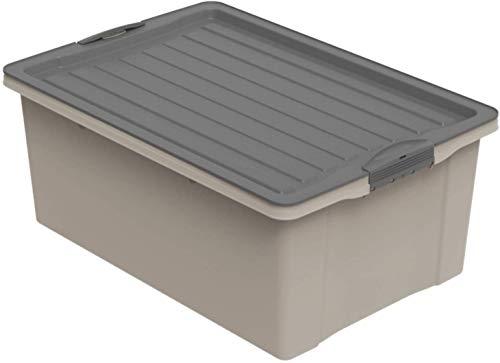 Rotho Compact - Caja de Almacenamiento 38 L con Tapa, Plástico (PP Reciclado) sin BPA, Marrón Capuchino/Gris Antracita, A3/38 L (57.0 x 40.0 x 25.0 cm)