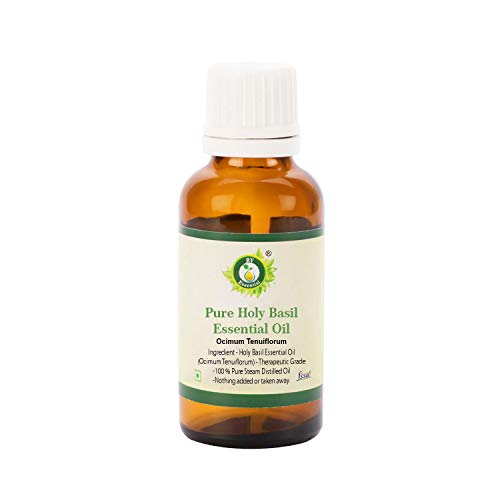 Albahaca santa aceite esencial | Ocimum tenuiflorum | Tulsi aceite esencial | 100% natural puro | Vapor destiló | Grado Terapéutico | Holy Basil Essential Oil |100ml | 3.38oz By R V Essential
