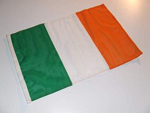 Fahne Flagge Irland 30 x 45 cm [Spielzeug]