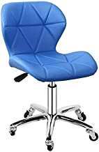 RANRANJJ Office Chair Executive Computer Desk with Back Support Chromed Base for Home Office Meeting Living Room Furniture...