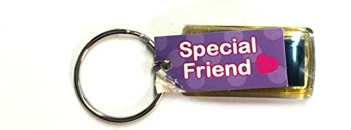Home For ALL The Holidays Kool Heart Flashing Key Ring by Ganz (Special Friend)