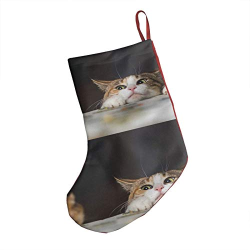 GOWINEU Christmas Stocking Cat Playing With Little Gerbil Mouse For Tree Toppers Xmas Tree Decorations For Christmas Decorations For Baby Girls Or Boys