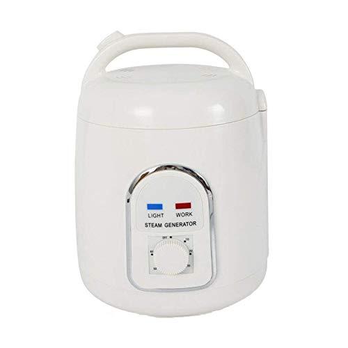 Zidao Dampferzeuger Für Portable Dampfsauna, Mini SPA Dampferzeuger Dampfgenerator Steam Generator Sauna Bath Dampfer Home Dampfgerät 1,5 Liter 850 Watt,Weiß