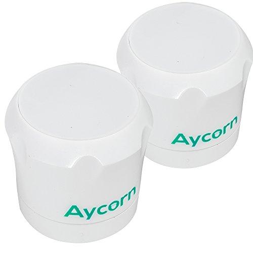 Aycorn Llaves de repuesto de repuesto (x2) para la seguridad
