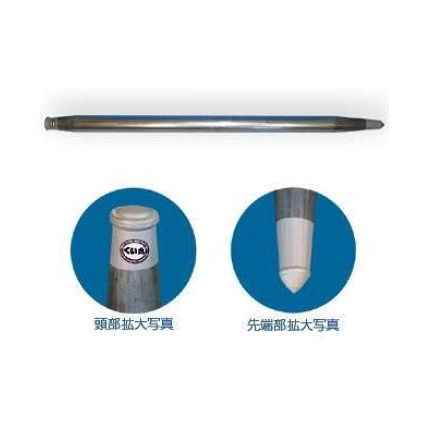 プロテスタント物理的な干し草君岡鉄鋼 単管杭 くい丸 打ちこみ専用鋼管材 直径48.6mm 長さ 1500mm
