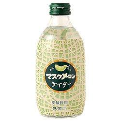 友桝飲料 マスクメロンサイダー 300ml瓶×24本入×(2ケース)