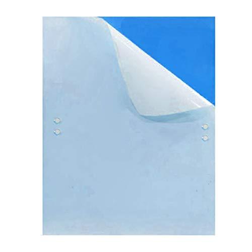 10piezas Ambos Azul Lados Adhesivo Trampa para Insectos Mosc