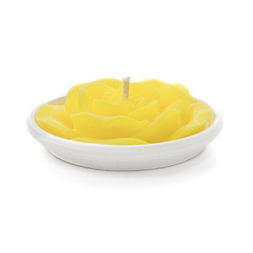 candele profumate kasanova Citronella candela profumata Citronella