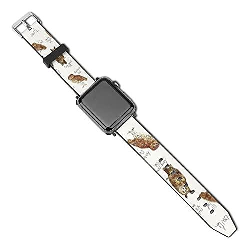 Correa de repuesto para reloj Apple Watch de 38 mm, 40 mm, correa de repuesto para iWatch Series 5/4/3/2/1, búhos