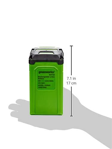 Greenworks Tools 01-000002925807
