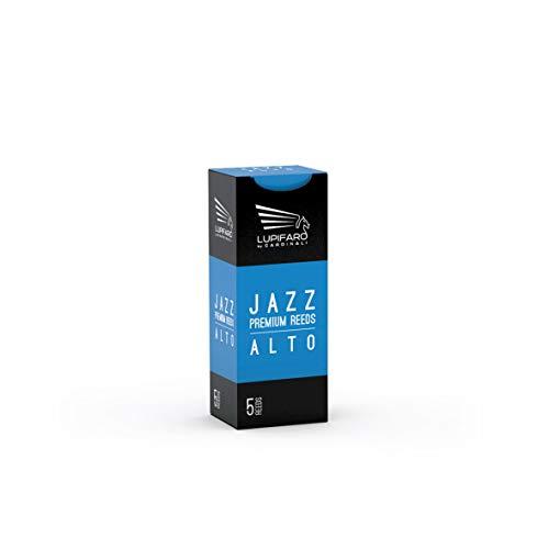 Lupifaro Ance - Alto Sax - Jazz - Unfiled Cut - Box 5 (Forza 2.5)