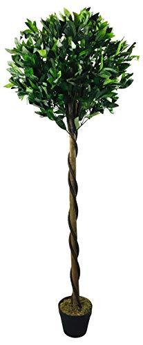 Geko Künstlicher Lorbeerbaum, Pyramidenform, 162 cm, Grün, Größe L
