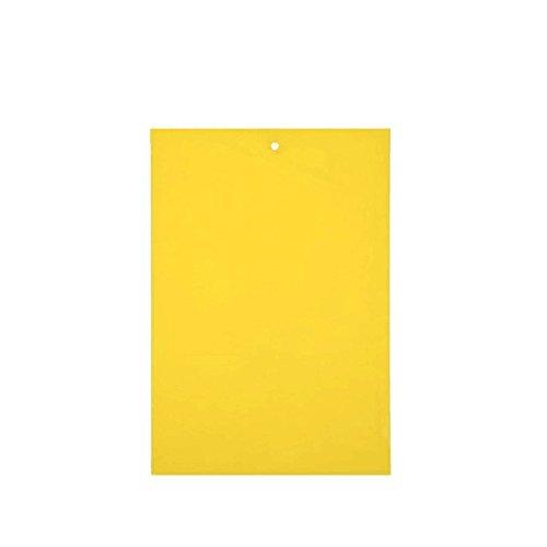 Liqiqi 3Gratis Fly Papier, Sticky Fliegenfänger Set für Zimmergewächshaus Oder Gebrauch Multi