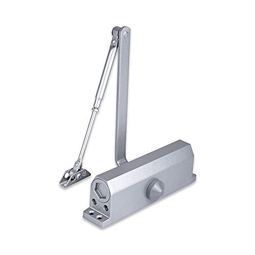 Idraulico Chiudiporta per Porta/Cancello Esterno, Tenere Aperto, Tampone Chiuso per uso Commerciale e Domestico 25-60kg Porta Alluminio Argento