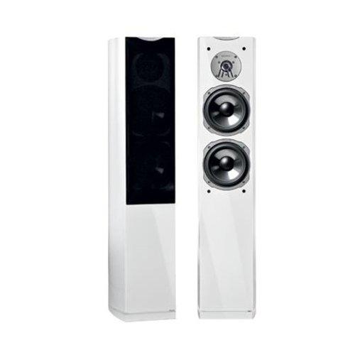 Quadral Signo Avantgarde 70 100W Weiß Lautsprecher