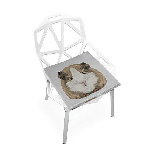 Karikatur Nette Meerschweinchen weiche rutschfeste quadratische Gedächtnisschaum Stuhl Auflagen Kissen Sitz für Hauptküche Esszimmer Büro Rollstuhl Schreibtisch Innen 16 X 16 Zoll