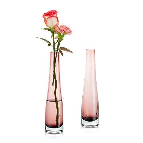 Florero De Vidrio para Flores, 2 Piezas Fucsia Florero Simple Bud Botellas Altas Y Delgadas De Cuello Estrecho para El Hogar Sala De Estar Oficina Decoración Interior Mesa