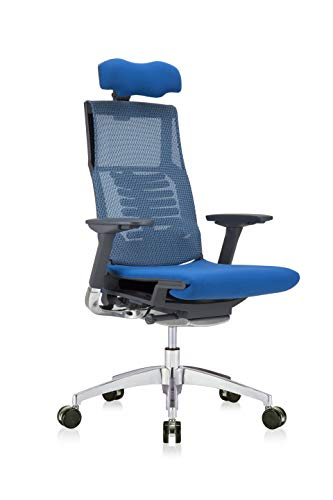 High-Back Ergonomic Executive Office Chair with Blue Mesh Back, Blue Fabric Seat, Charcoal Frame and Headrest by Eurotech