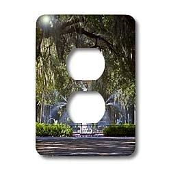 3dRose Lsp_89316_6 Water Fountain, Forsyth Park, Savannah, Georgia - Us11 Dfr0070 - David R  Frazier 2 Plug Outlet Cover