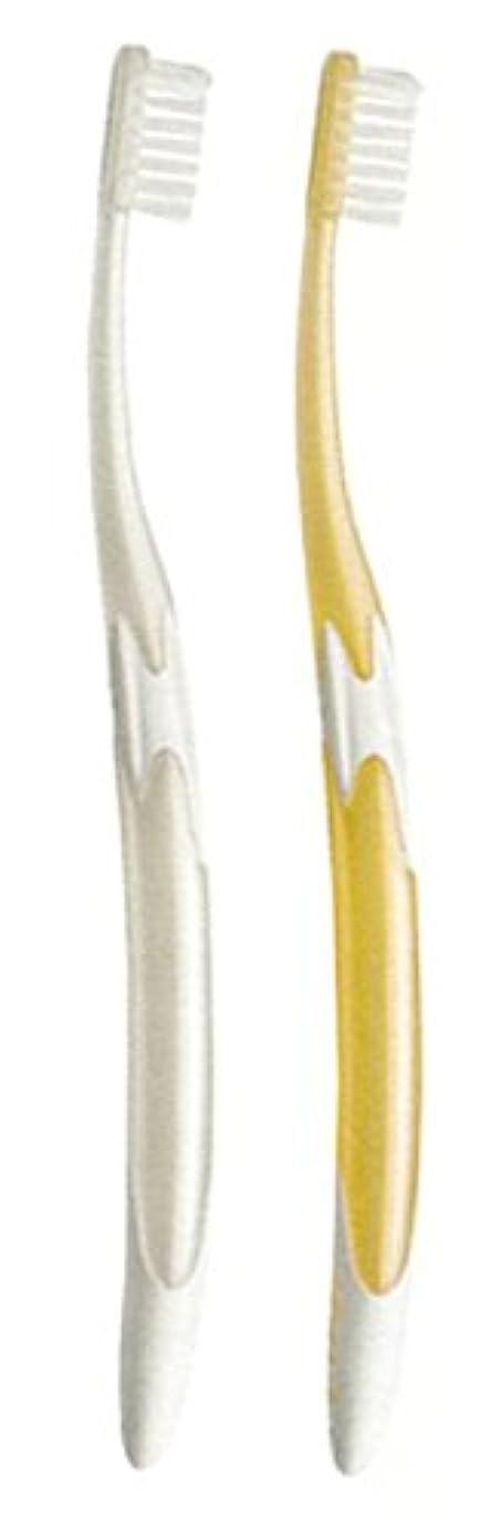 休眠オリエンテーション右ジーシー GC ルシェロ W-10 歯ブラシ 6本 ( パールホワイト3本?パールゴールド3本 )
