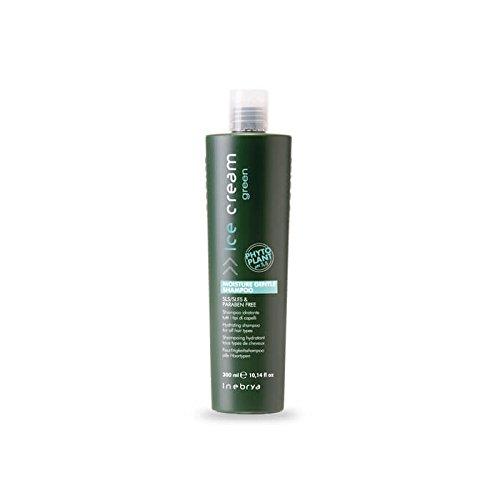 Shampoing hydratant GREEN sans paraben INEBRYA 300 ml