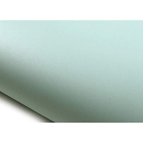 ROSEROSA Peel and Stick Decorative PVC Solid Instant Self-Adhesive Covering Countertop Backsplash Aqua Marine (SG59 : 2.00 feet X 6.56 feet)