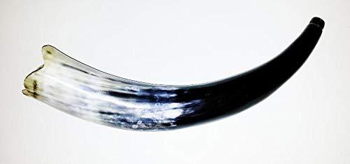 Olifant, corne de brume en corne de zébu de 40 cm