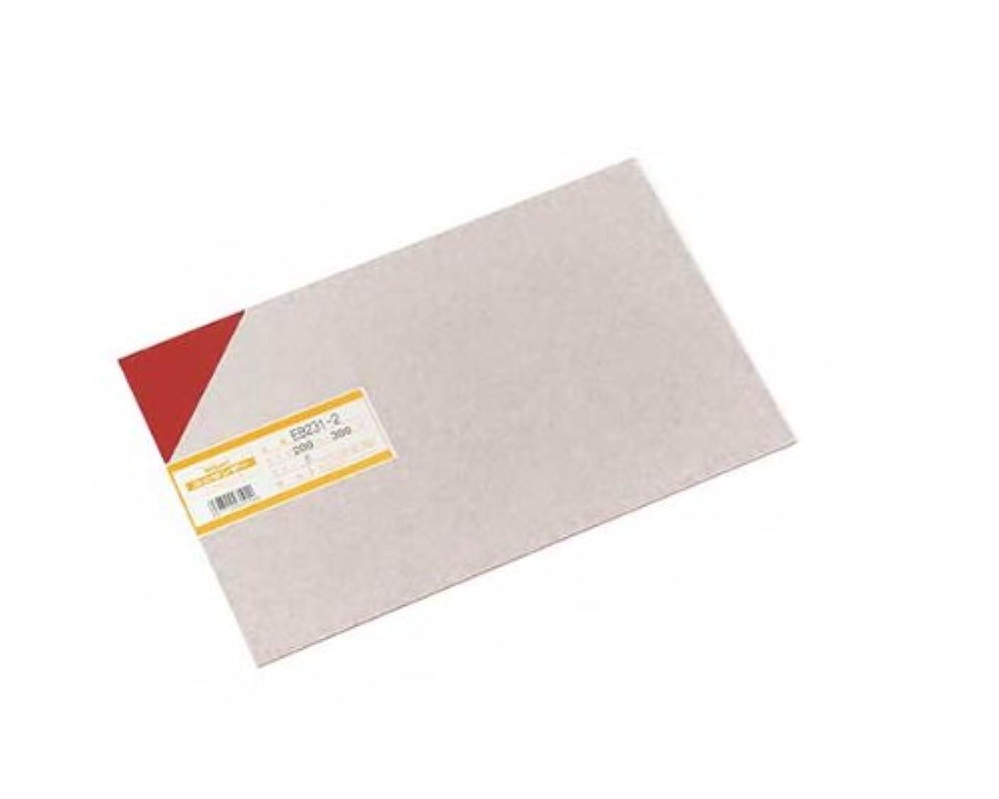骨の折れるフォーラム綺麗な光 塩ビ板 200×300×1 EB231-2 アカ