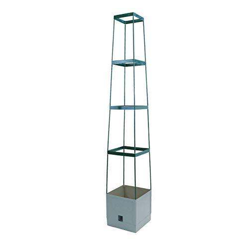 Bio Green Pflanzen-Aufzucht-Turm Maxitom, mit Rankhilfe für Tomaten und 2 L Wasserspeicher, anthrazit
