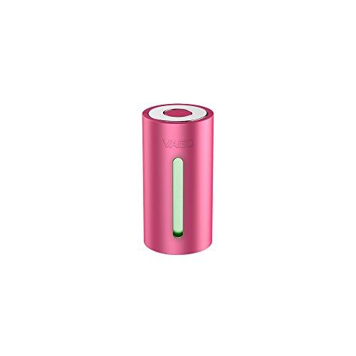 VAGO Portable Vacuum Gerät & 1 X 50Cmx60Cm Tasche Pack Organizer, 1 cm, Pink