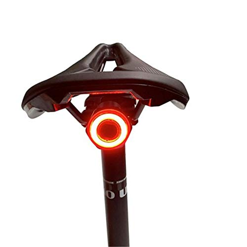 letaowl Fahrradlicht Intelligente Induktion Bremse Schwanz Licht Mountainbike Licht USB Aufladen Fahrrad Nachtfahren