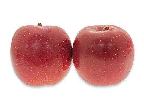 フルーツなかやま サンふじ リンゴ 6個入 糖度12度以上 1個350g以上 幅8cm高さ8cm以上 東京都卸売市場のリンゴ専門人が選んだ厳選品