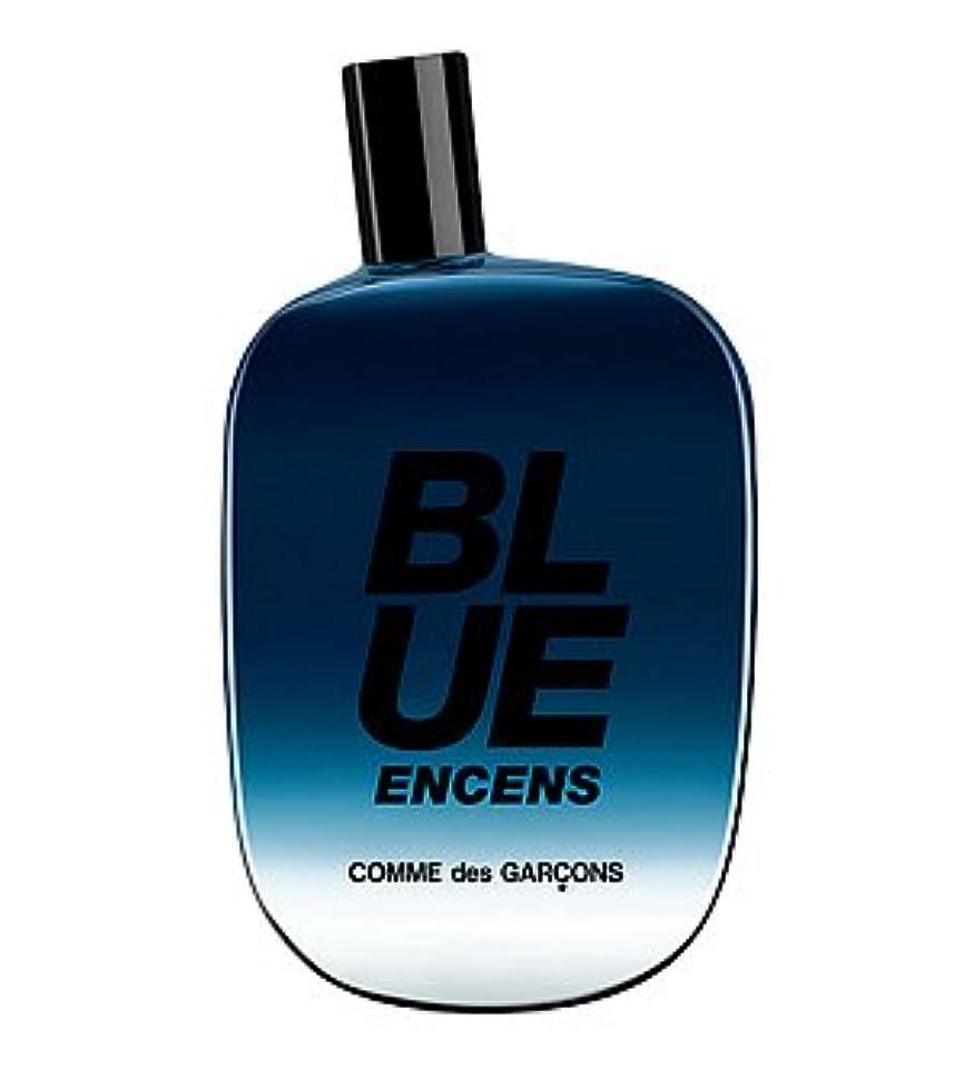 散文タイルむしろComme des Garcons Blue Encens (コムデギャルソン ブルー エンセンス) 3.4 oz (100ml) EDP Spray for Unisex