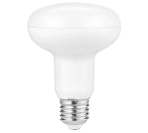 Led Flood Light Bulbs BR25, 90W Equivalent, Dimmable, 2700K Warm White, Indoor/Outdoor Flood Lights for Recessed Cans, E26 Base, Pack of 1