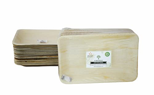 Ecogreenware, 25 piatti usa e getta a foglia di palma, rettangolari, 25 pezzi 100% biodegradabili per feste e piatti compostabili, adatti per matrimoni, feste all'aperto, barbecue e pic-nic.