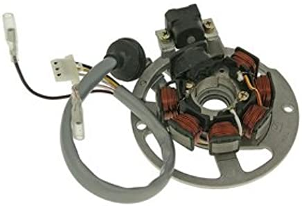 amazon com: magneto stator yerf dog atv 23000 90cc quad yerf-dog youth atv  generator new: automotive