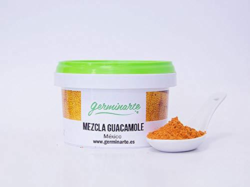 MEZCLA GUACAMOLE (100gr.)   Calidad gourmet   Mezclas de especias