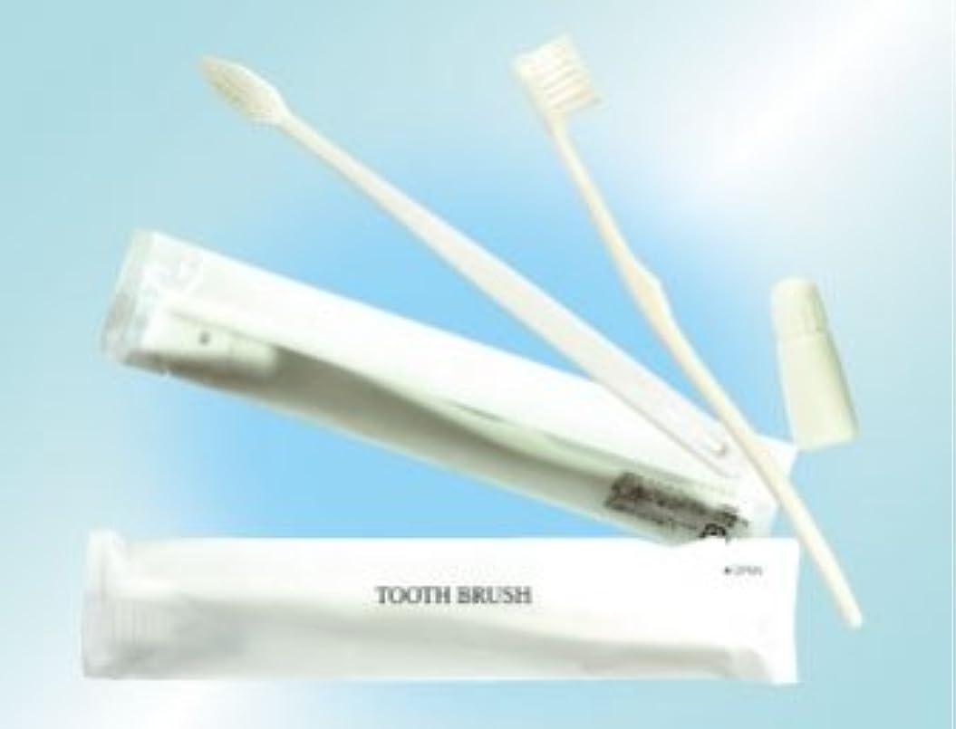 通常スリム動的歯ブラシセット 3gチューブ 300本 (白)