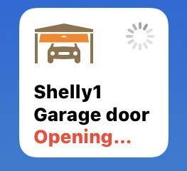 Apple HomeKit compatible Shelly 1 Garage Door by HomekitBG