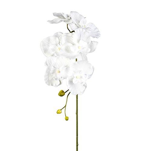 Kunstblume PHALENOPSIS, ORCHIDEENZWEIG 76 cm. Farbe weiß WEISS 40