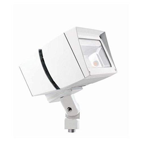 RAB Lighting FFLED39W Future Flood 39W Cool LED, 120V/277V, White