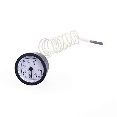 Angeek, termometro in acciaio inox, con quadrante in acciaio inox, per misurare la temperatura dell'acqua, grande oven in acciaio inox